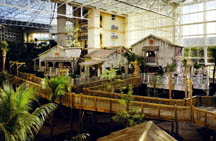 Everglades Atrium - Adventure Travel