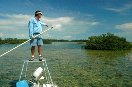 Bonefish guide