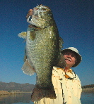 Larry's 10-pounder
